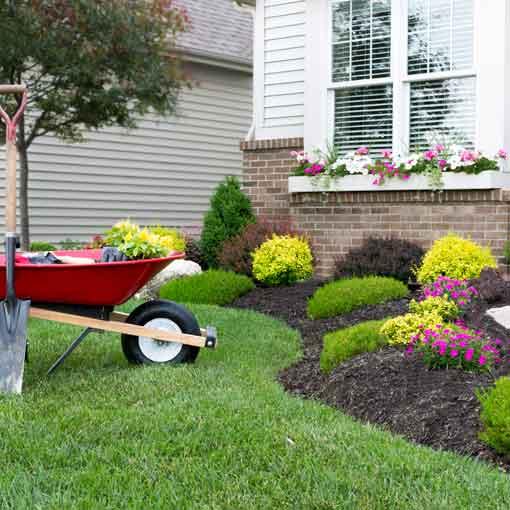 Landscaping Tips For Spring